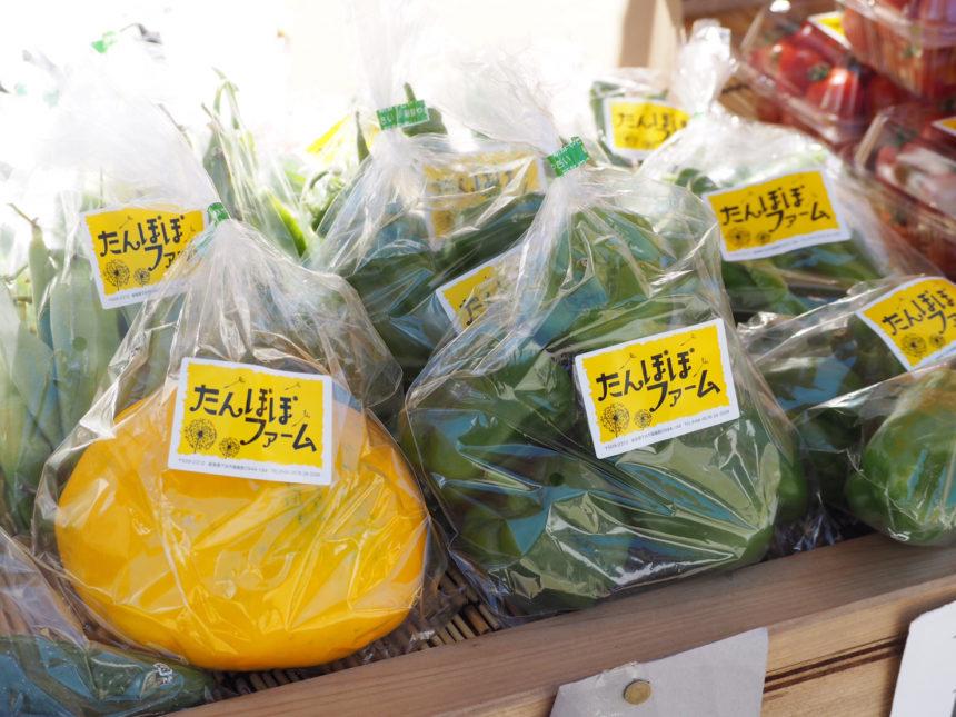 天領朝市 野菜
