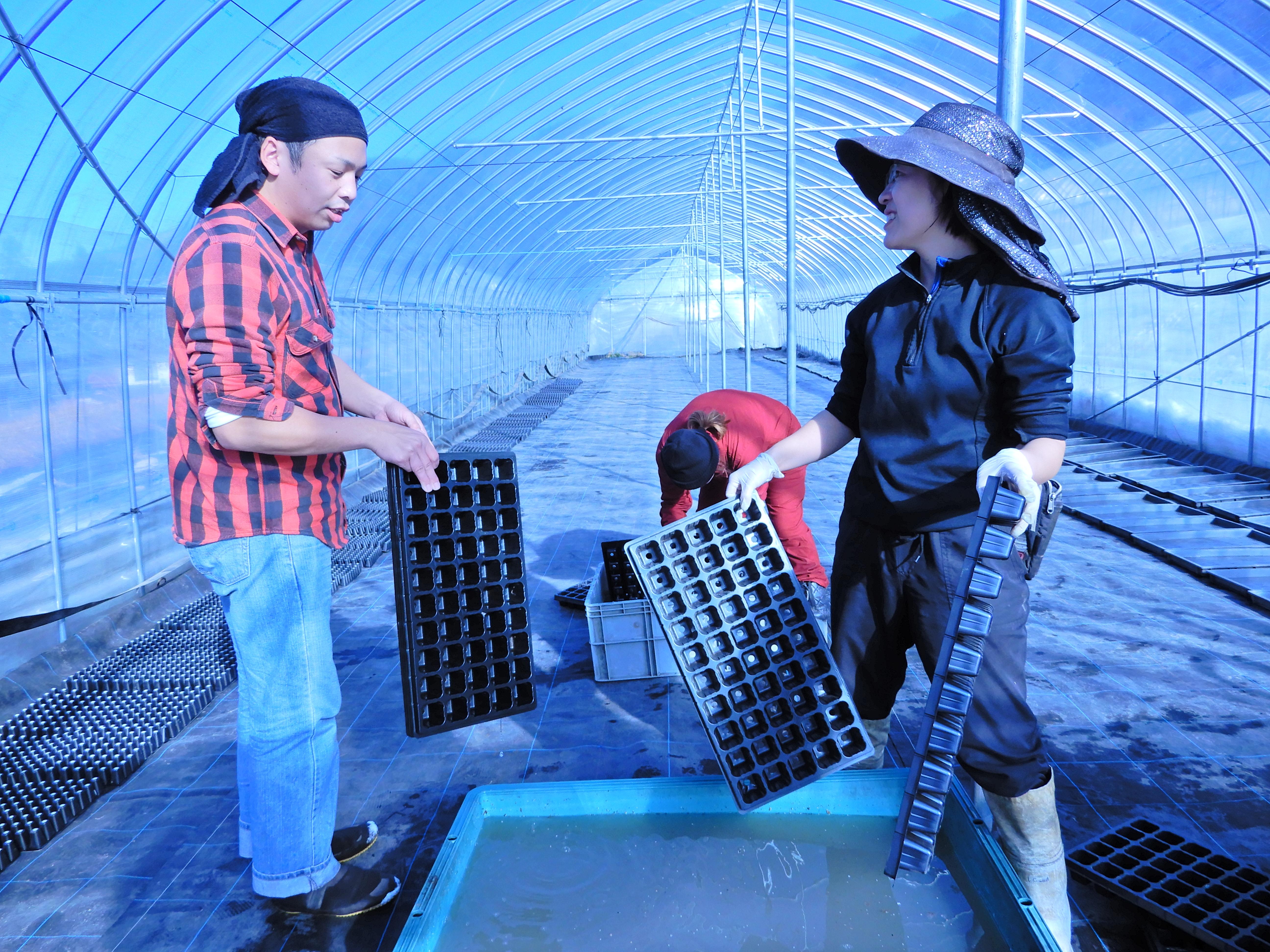 仲間と共に始めた農業
